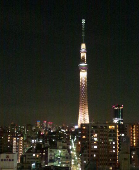 Skytree3